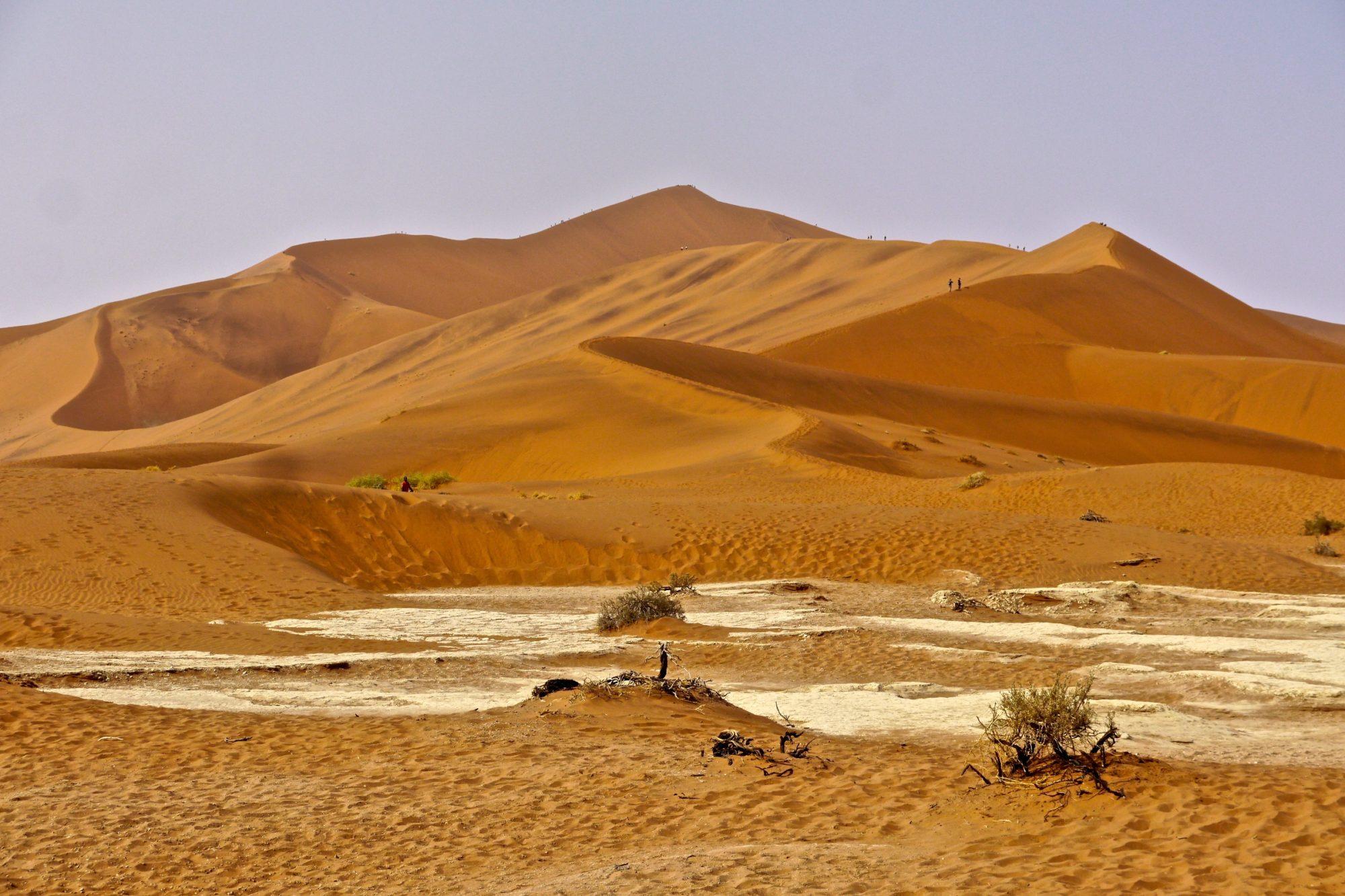 Namibia's Great Sand Sea - Erika's Travels
